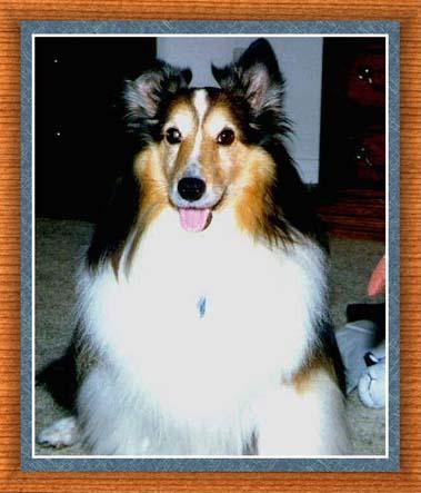 click for Stella's tribute page